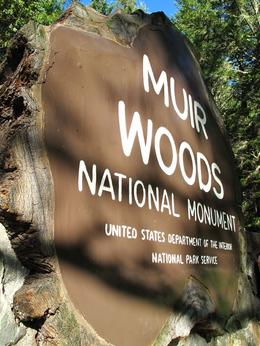 Photo of San Francisco Muir Woods and Sausalito Tour plus Bay Cruise Muir Woods park entrance.