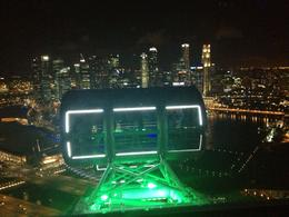 Singapore Flyer by night, Cat - August 2013