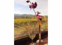 Thanks to the Napa Wine Train and staff for a memorable afternoon. , sasmaksue - November 2014