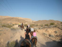 Photo of Las Vegas Wild West Sunset Horseback Ride with Dinner DSCN4320.JPG