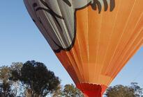 Photo of Gold Coast Hot Air Ballooning including Champagne Breakfast from the Gold Coast or Brisbane