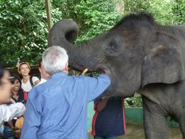 Feeding the elephants at the sanctuary. Their tongues are very soft and spongy. - December 2008