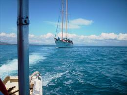 Foto von Fiji Fijian Islands and Snorkel Full-Day Whales Tale Cruise including Beach BBQ Lunch The Whales Tale