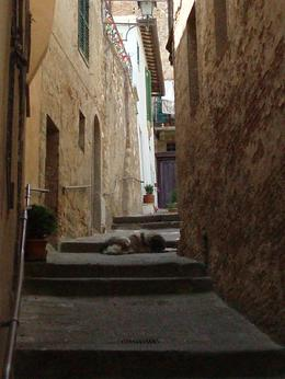Photo of Rome 5-Day Best of Italy Trip Montepulciano