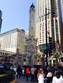Photo of Chicago Chicago City Hop-on Hop-off Tour The Water Tower