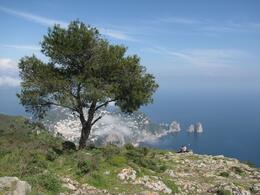 Photo of Rome Capri Day Trip from Rome View from Anacapri