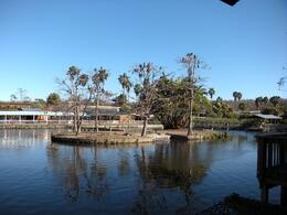 Photo of Orlando Gatorland General Admission Ticket View of the park