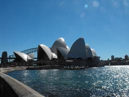 Sydney Opera House - taken from the Botanical Gardens, Gillian B - August 2010