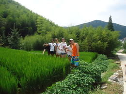 Walking through rice paddies - January 2013