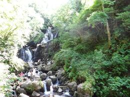Photo of Killarney Afternoon Killarney Highlights Tour Waterfall