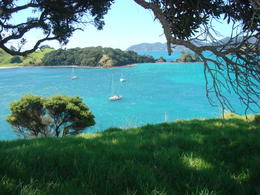 Photo of Bay of Islands Best of the Bay Supercruise - Original Cream Trip DSC03952