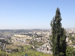 View of Jerusalm from Mt of Olives, Cat - May 2015