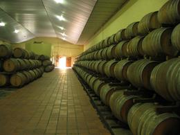 This was the first winery we visited and we were shown round and told how the wine was made, Valerie P - October 2009