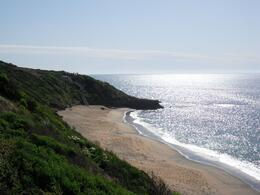 Photo of Melbourne Great Ocean Road Small Group Eco Tour from Melbourne Bell's Beach