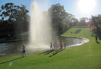 Photo of Perth Kings Park & Botanic Garden