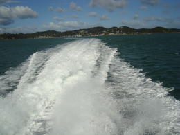 Photo of Bay of Islands Best of the Bay Supercruise - Original Cream Trip DSC03923