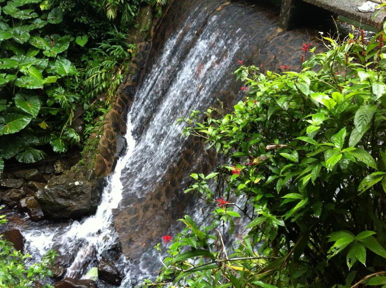 El Yunque Highlights - San Juan