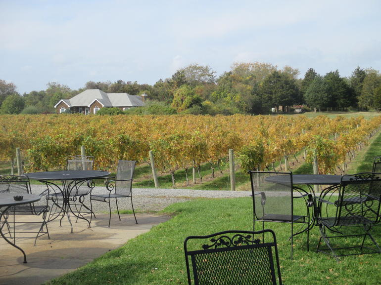 A beautiful place to stop off and enjoy the lovely wines of this region.
