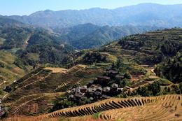 Rice Terraces - May 2012