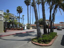 Photo of Anaheim & Buena Park Catalina Island Day Trip Main Road