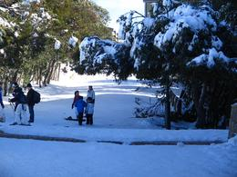Photo of Melbourne Mt. Buller Ski Tour from Melbourne Mt Buller