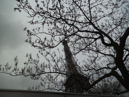 Photo of Paris Private Transfer: Disneyland Resort Paris Eiffel Tower