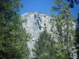 Photo of San Francisco Yosemite National Park Day Trip from San Francisco Photos from Yosemite National Park August 2014