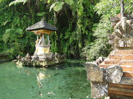 Photo of Bali Singaraja and Bedugul North Coast Bali Mountain Tour Temple with magical springs