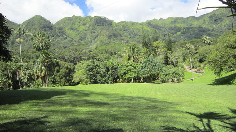 Vally of the Rainbow 3 - Oahu
