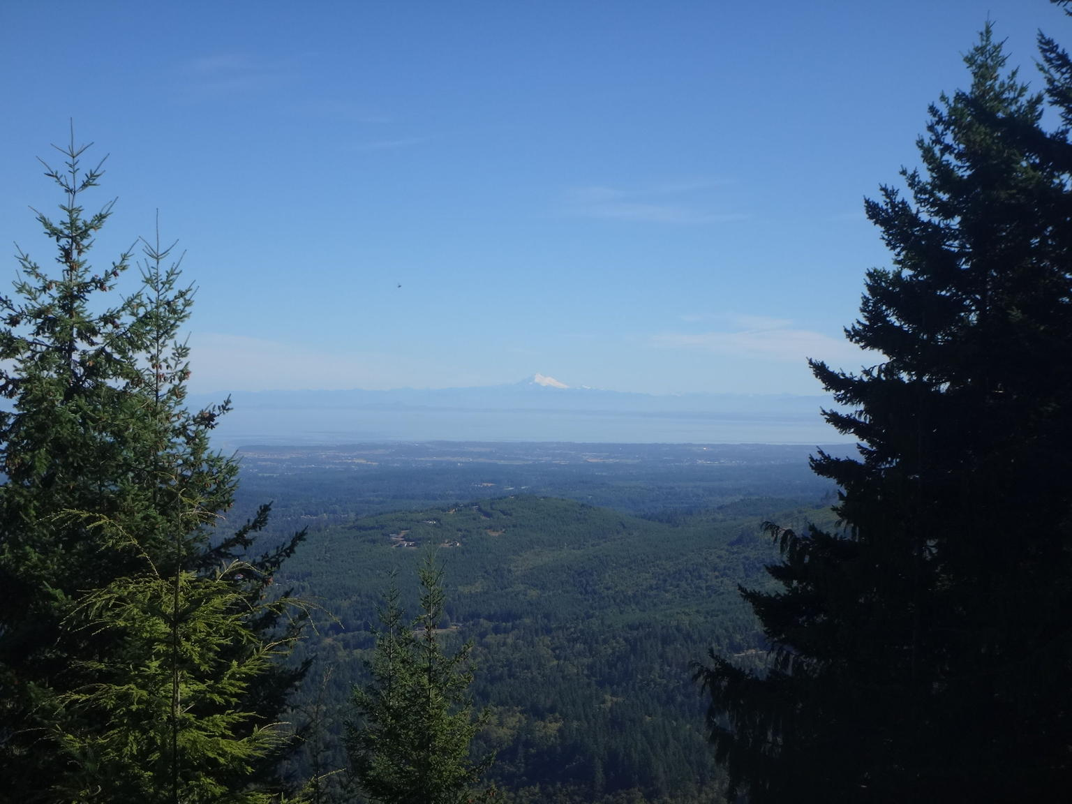 Best of Olympic National Park from Seattle: All-Inclusive Small Group Day Tour