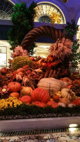 The Bellagio Garden conservatory Fall features. , ashes - February 2016