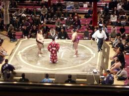Photo of   Facing Off at the Sumo