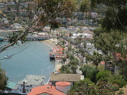 Photo of Anaheim & Buena Park Catalina Island Day Trip Just 1 view of so many