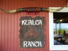 Enjoyed lunch at the Kualoa Ranch. , BEVERLEY - February 2015