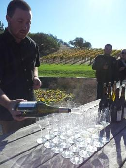 first stop - nicholson ranch winery , Karen G - November 2013