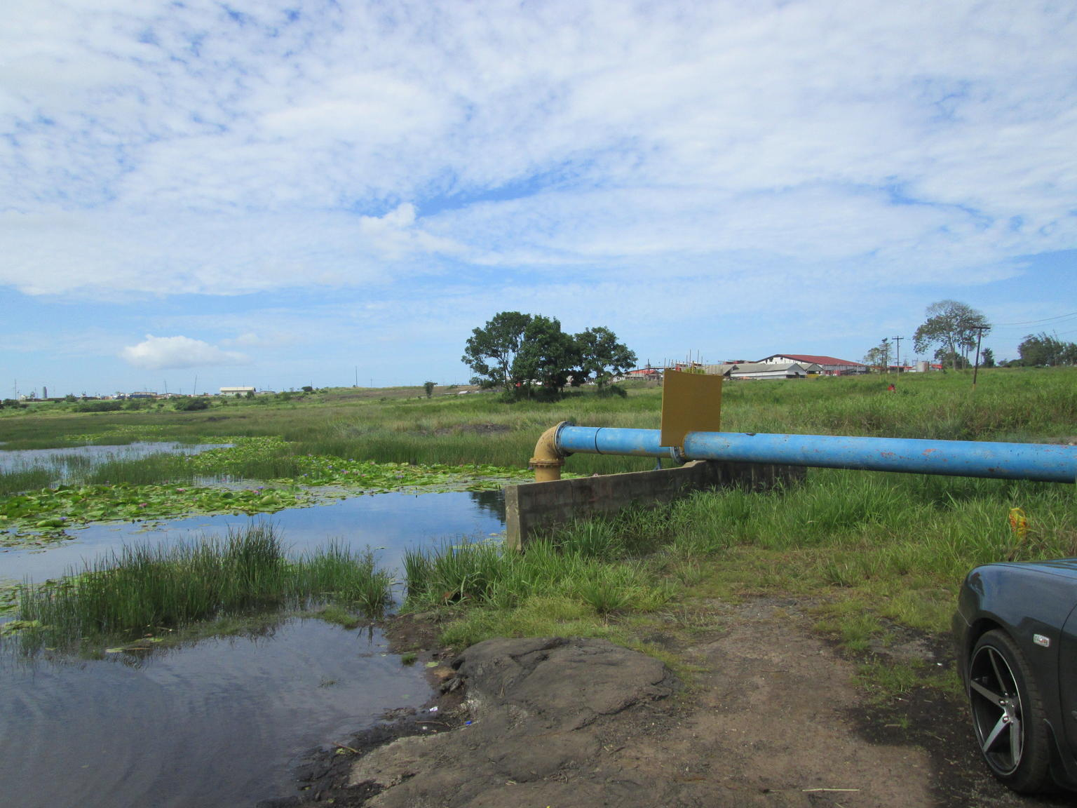 Trinidad Island Sightseeing Tour: Pitch Lake and Chaguanas
