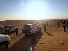 Dune bashing was too awesome, and we stumbled upon a pack of camels. , Clay S - March 2014