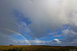 Photo of Melbourne Great Ocean Road Small-Group Eco-Tour from Melbourne Double Rainbow