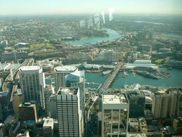 Photo of Sydney Sydney Pass: SEA LIFE Aquarium, Sydney Tower Eye, WILD LIFE Sydney, Sydney Harbour Cruise, and Madame Tussauds From Sydney Tower Eye
