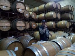 french oak barrels at madonna estate , Karen G - November 2013