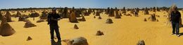 Photo of Perth Pinnacles Desert, Koalas and Sandboarding 4WD Day Tour from Perth panoramic pinnacles