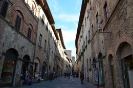 San Gimignano, a lovely picturesque village ... with the best gelato! , Danielle R - November 2015