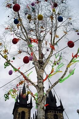 Photo of   Easter Egg Tree