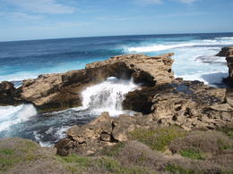 Photo of Perth Rottnest Island Tour from Perth or Fremantle Fantastic Scenery