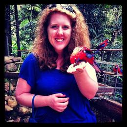 Photo of Brisbane Springbrook National Park Discovery Full-Day Bushwalk including Glow Worm Tour Feeding the Rosellas!