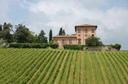 Photo of Florence Vespa Small Group Day Trip to the Chianti Wine Region Our Vespa Tour