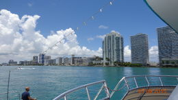 A view of the city of Miami. , charmain w - July 2015