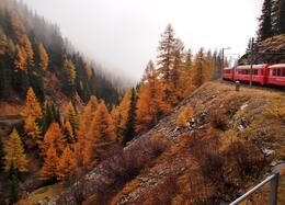 Photo of Milan Swiss Alps Bernina Express Rail Tour from Milan Beautiful Autumn/Winter View