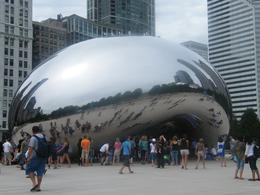 Photo of Chicago Chicago Grand Half-Day Tour Big bean