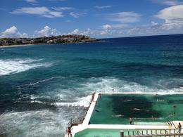 Salt water pool at Bondi, Cat - March 2013